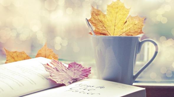 paper-autumn_00347102